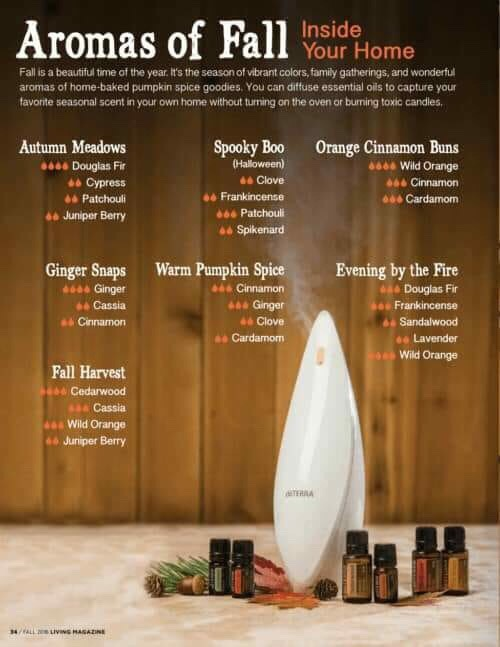 Aromas of Fall Essential Oil Diffuser Blends